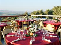 מסעדה עם נוף לעמק. חוות התבלינים בגלבוע