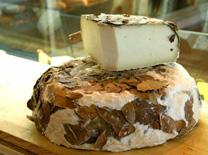 גבינות מעולות בבית הקפה ארץ זבת חלב