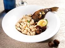 מנות ראשונות ועיקריות מגוונות במסעדת פסטה מיאה