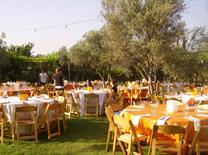 אירועים בנוסח הודי במסעדת סנגם