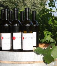 בתחילת 2009 יצא היין הכשר של בציר 2007