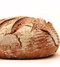 מגוון מרקי היום בסניפי לחם ארז ברחבי הארץ