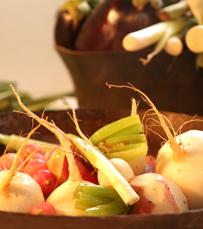 מרקים, נזידים, תבשילים וקדירות בלחם ארז