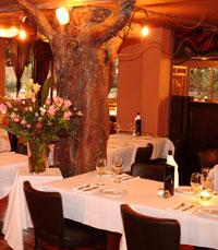 טרטוריה הקסומה, מוקפת העצים, בסגנון כפרי אותנטי