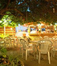 מסעדה באור יהודה, עם צמחייה וגן מטופח