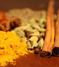 התבשילים והמאפים רובם מהמטבח של צפון הודו