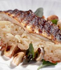 הדג הברזילאי על מצע כדור אורז הלבן