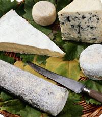 הארוחות כוללות – גבינות, יין, לחמים