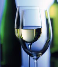 המרכז לקידום תרבות היין הגדול והותיק בישראל