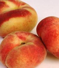 הזן מתוק יחסית לאפרסקים האחרים