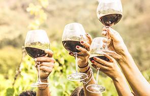 יינות מומלצים לקראת הסדר