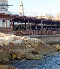 מסעדות דגים בעכו