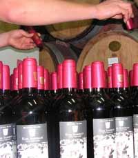 משק יין הנס שטרנבך