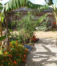 תבלין בגן - גן השומרון