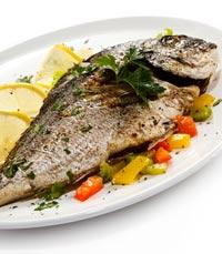 עדיף דגים על פני בשר