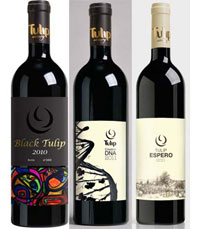 יינות אדומים של יקב טוליפ