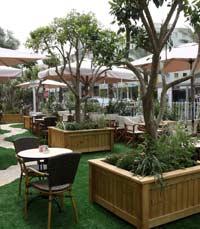 מסעדת מרתה באבן גבירול, תל אביב