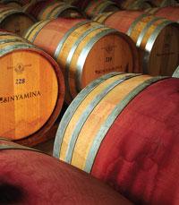 בסדרה של יינות שהם שילוב של שני זני ענבים יחד