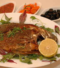 אנחנו מתמקדים בדגים: שבתאי הדייג ירושלים