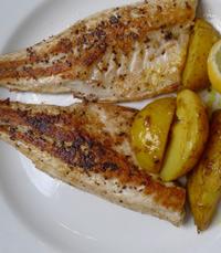 דגים ומאכלי ים - ג'קו מאכלי ים