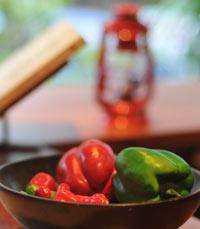 מאכלים מקסיקניים לשעת צהריים