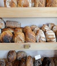 קונים בלחם מקסים