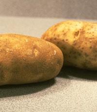 האם אלו תפוחי האדמה?