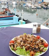 מול הנמל והסירות - הדייגים