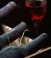 ערב שכולו יין בשלו ביער