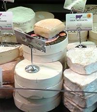 מבחר מסחרר של גבינות