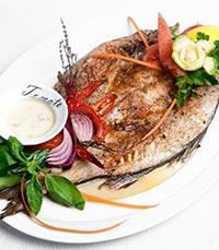 התמחות בדגים ופירות ים