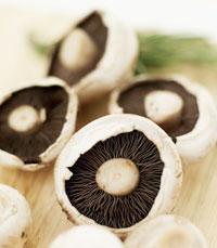 פפרדלה רחבות - הפטריות היו בשרניות