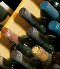 מרתף היין בזכרון יעקב