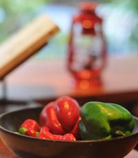 קולעים למטרה במסעדת מקסיקנה
