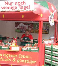 דוכני תותים ומסעדות בברלין