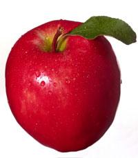 תפוח ליום ולרופא שלום - מתכוני תפוחים מאת ליאורה חוברה