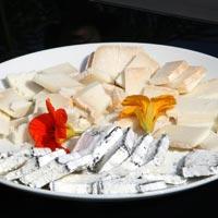 גבינות עזים אורגניות - פסטיבל האוכל של יואב יהודה