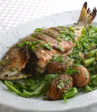דגים למנה העיקרית - מוטיפיורי בירושלים