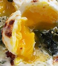 ביצים רכות על תבשיל תרד