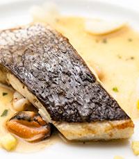 דגים - מקור חלבון חיוני לגוף