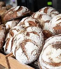 כיכרות לחם בדרימרי