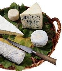 מבחר גבינות משובחות