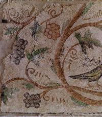 """מוזיאון ארצות המקרא ירושלים בט""""ו בשבט"""