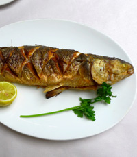 משלוחי דגים טריים לצריכה פרטית - ג'קו מאכלי ים חיפה