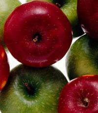 מתכוני תפוחים מהדיאטנית הקלינית ליאורה חוברה
