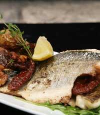 בין הקשתות - דגים גם בירושלים