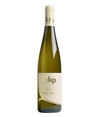 יינות איכות מומלצים לפסח