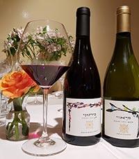 חדשות ועדכונים מעולם היין